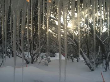 Skilib icicles